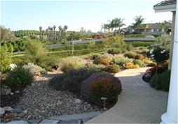 California Friendly residential landscape